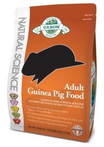 NS-Guinea-Pig-Large